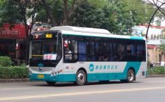 阳江ZP线麻礼方向公交车路线