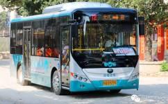 阳江12路公交车路线