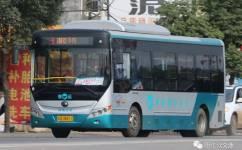 阳江3路公交车路线