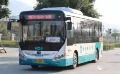 阳江9路公交车路线