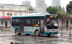 阳江5路公交车路线