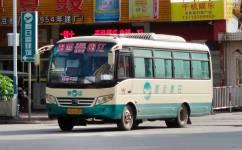阳江阳西普通线公交车路线