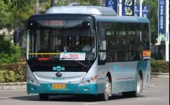 阳江4路公交车路线