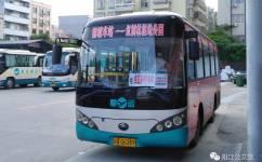 阳江闸坡车站—红树林湿地公园公交车路线