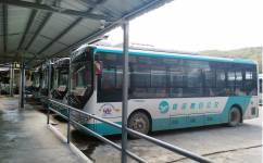 阳江D2线公交车路线