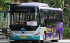 阳江10路公交车路线