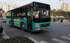 宜昌65路公交车路线