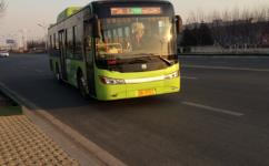 营口206路公交车路线