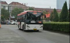 余姚203路公交车路线