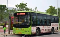 漳州30路公交车路线