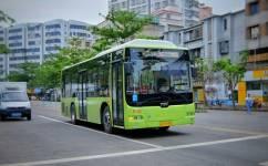 湛江11路公交车路线