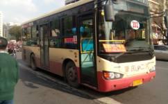 肇庆202路公交车路线