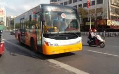 肇庆10路公交车路线