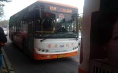 肇庆20路公交车路线