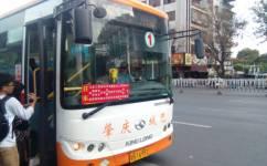 肇庆1路南线公交车路线