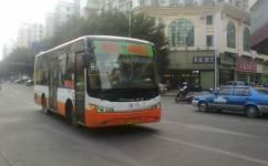 肇庆旅游1路公交车路线