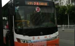 肇庆28路公交车路线