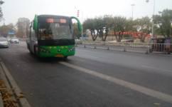 肇庆3路公交车路线