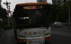 肇庆12路公交车路线