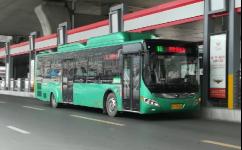 郑州B11路公交车路线