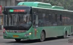 郑州Y802路公交车路线