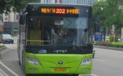 中山202路公交车路线