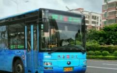 珠海8路公交车路线