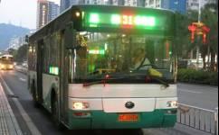 珠海31路公交车路线
