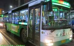 珠海10F路公交车路线