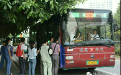 珠海202路公交车路线